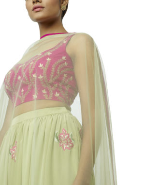 Embroidered Lehenga & Choli Set