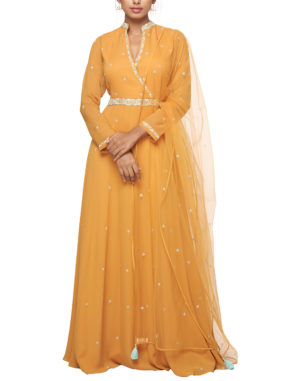 Embroidered Mango Anarkali
