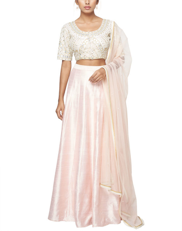 Embroidered Choli with a lehenga and dupatta