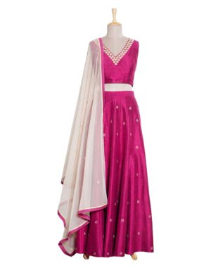 Ruby Crop Top, Lehenga & Dupatta Set